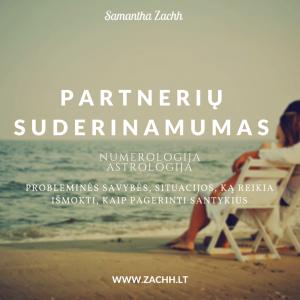 Partnerių suderinamumas